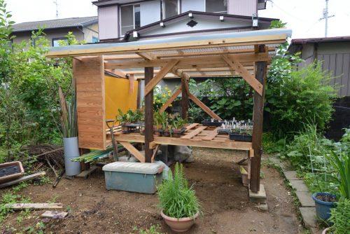 花の苗置き場兼避難小屋